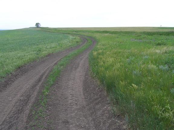Полевая дорога вдоль рва и вала. В дали за деревом находиться квадратная крепость.