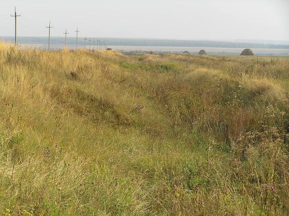 Древний Великий Русский оборонительный вал.ф.6. Мензелинский р-н. у д.Матвеевки. Вдали перед лесом река Ик.2005г.