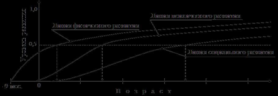 Основные линия в развитии человека и их соотношение