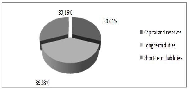 Figure 5 - The structure of the liabilities of the enterprise as of 31.12.2014 (%)